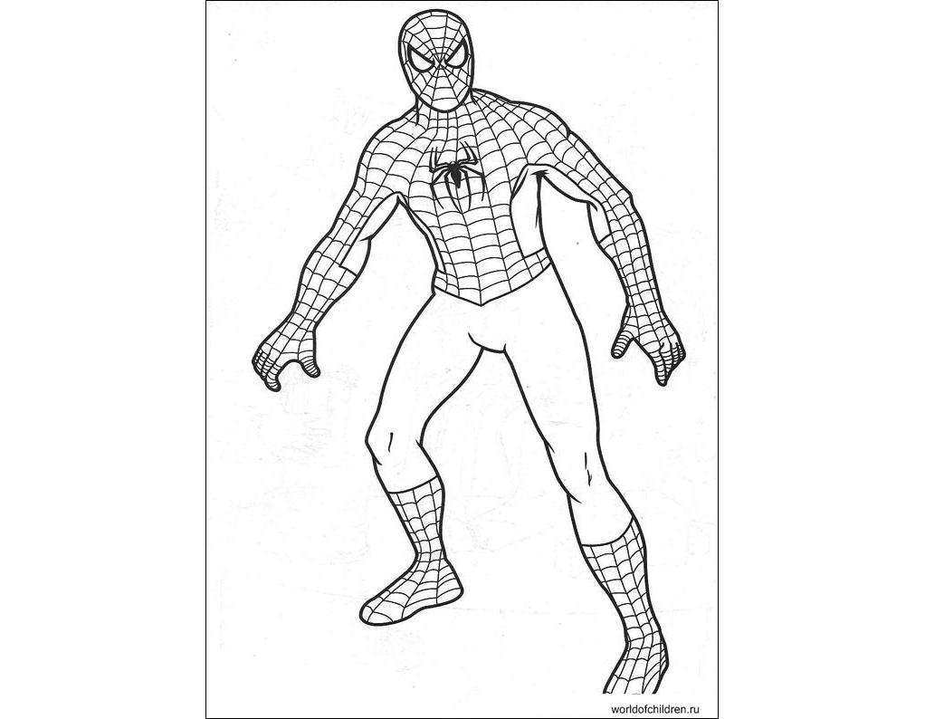 Раскраски человек паук раскрашивать онлайн